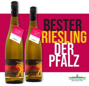 """Unser Hambacher Orts-Riesling """"SCHWARZROTGOLD"""" wurde von der Landwirtschaftskammer als bester Riesling der Pfalz 2021 ausgezeichnet!"""